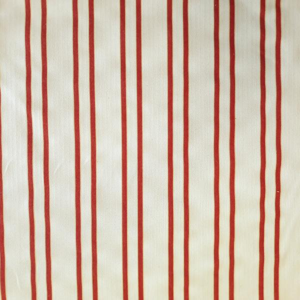Ticking Stripe Poppy